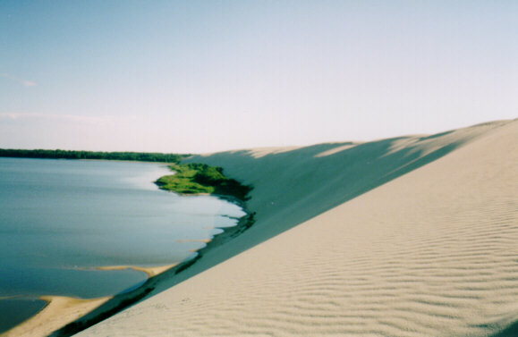 Nida's Great Dune