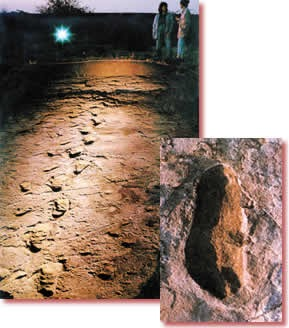 Footprint of laetoli